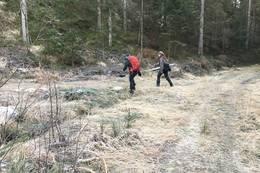Etter Stølen går du på god skogsvei mot Lindekleiv, men ta sti til venstre etter bru - Foto: