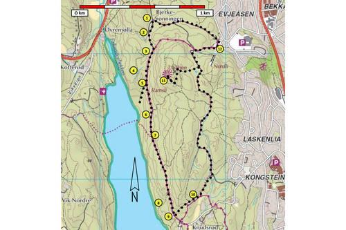 borrevannet kart Hortensmarka Nord, Horten Historisk Tursti 18   Tur   UT.no borrevannet kart