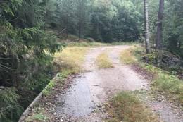 Ta til venstre rundt Sørtjønn. Det er bare et par hundre meter til Erkleivveien / kjørevei om du går rett frem - Foto: