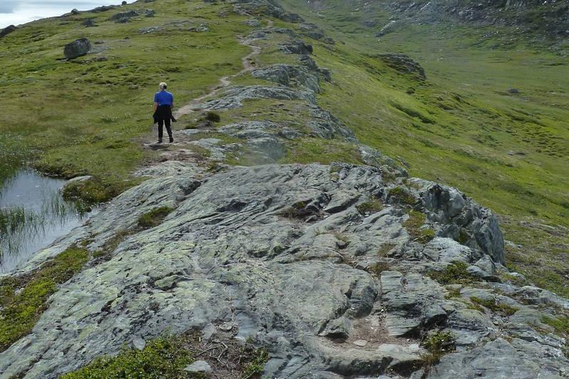 På vei opp mot toppen av Forollhogna.