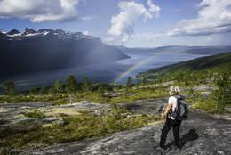 Her ser en indre del av Sagfjorden med Veggen til venstre for midten. - Foto: Kjell Fredriksen