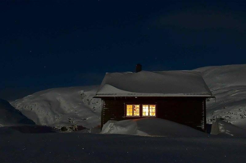 Måneskin i vinternatt