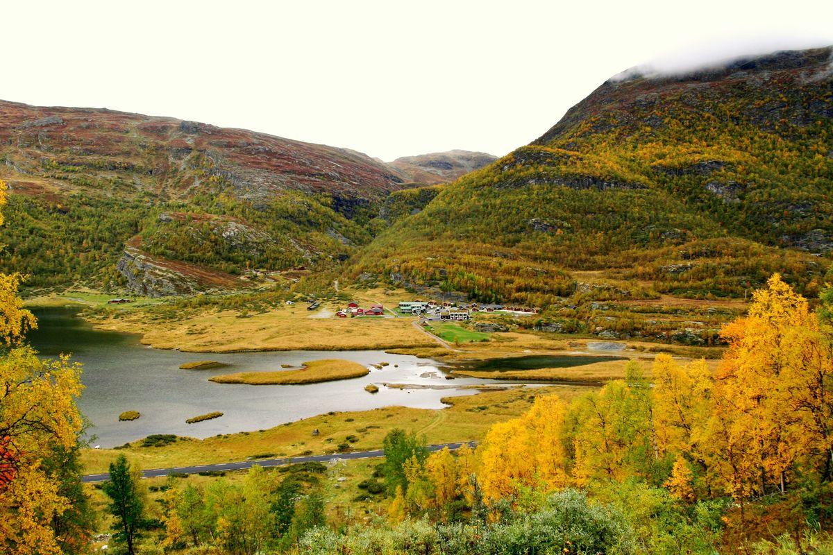 Høst ved Østerbø i Aurlandsdalen