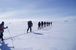 På fellestur over Hardangervidda -  Foto: Hilde Løken Magnussen