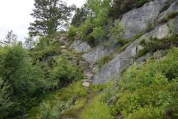 Fin trapp oppover bratta. - Foto: Oddveig Torve