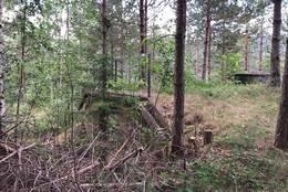 Bunkers på nordsiden av Sagkollen - Foto: Birgit Vildalen