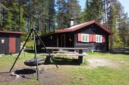 Sommer ved Råbjørnhytta - Foto: DNT Oslo og Omegn