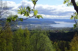 Lierdalen mot Drammensfjorden -  Foto: Jeanette Zetterstrøm