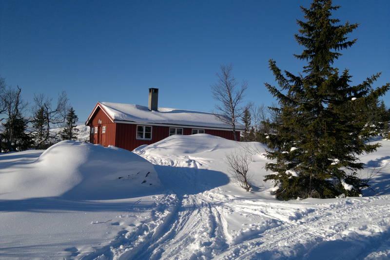 Daggrø vinterstid fra skisporet. Foto: Kristian Strømmen