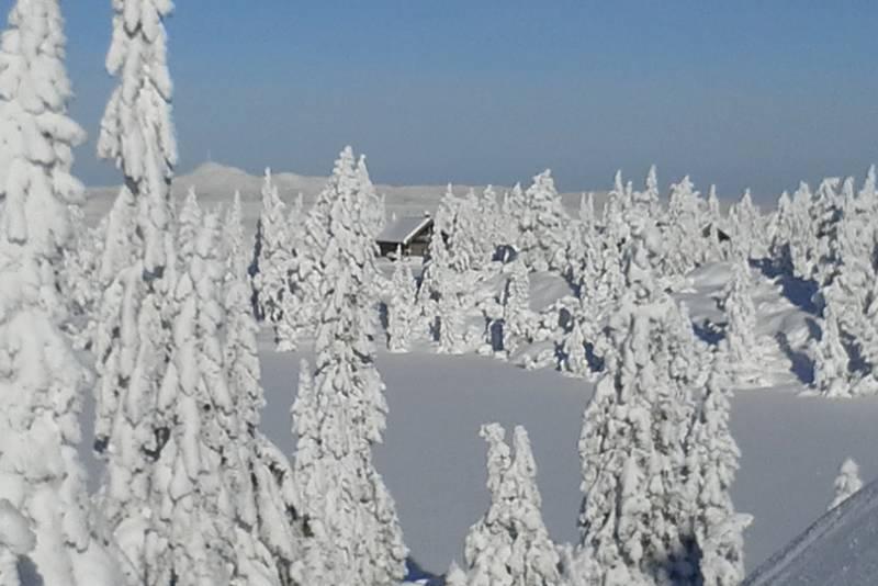 Sveinsbu - vinter