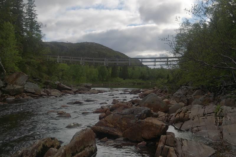 Gangbro over elva