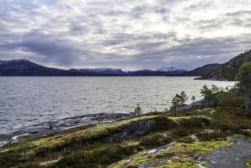 Stien fra Nevervika til Kjer går langs fjæra.