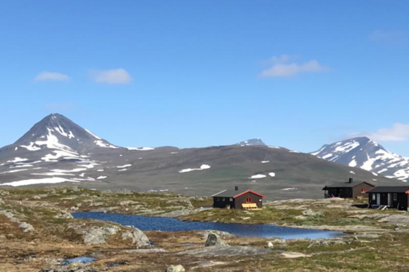 Gappo-tunet fotografert 23. juli 2017. Foto: Stig Kristian Sørensen