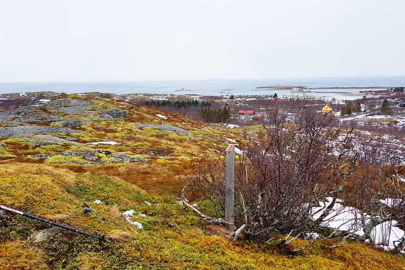 Utsikt fra Vardhågen mot Buvågkaia. Klippetanga til høyre for midten av bildet