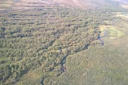 Bojobæskihytta sett fra luften - Foto: Katrine Fugelli Simonsen