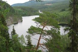 Utsikt sørøstover Rotnadalen, Hof Finnskog. - Foto: Stein  Briskerud