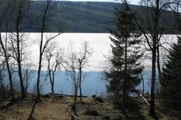 Utsikt fra Jægervashytta mot bålplassen og Jægervatnet - Foto: Solveig Festø