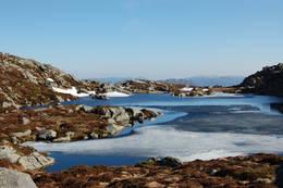 Ulserihaugtjørna - Foto: Roald Årvik