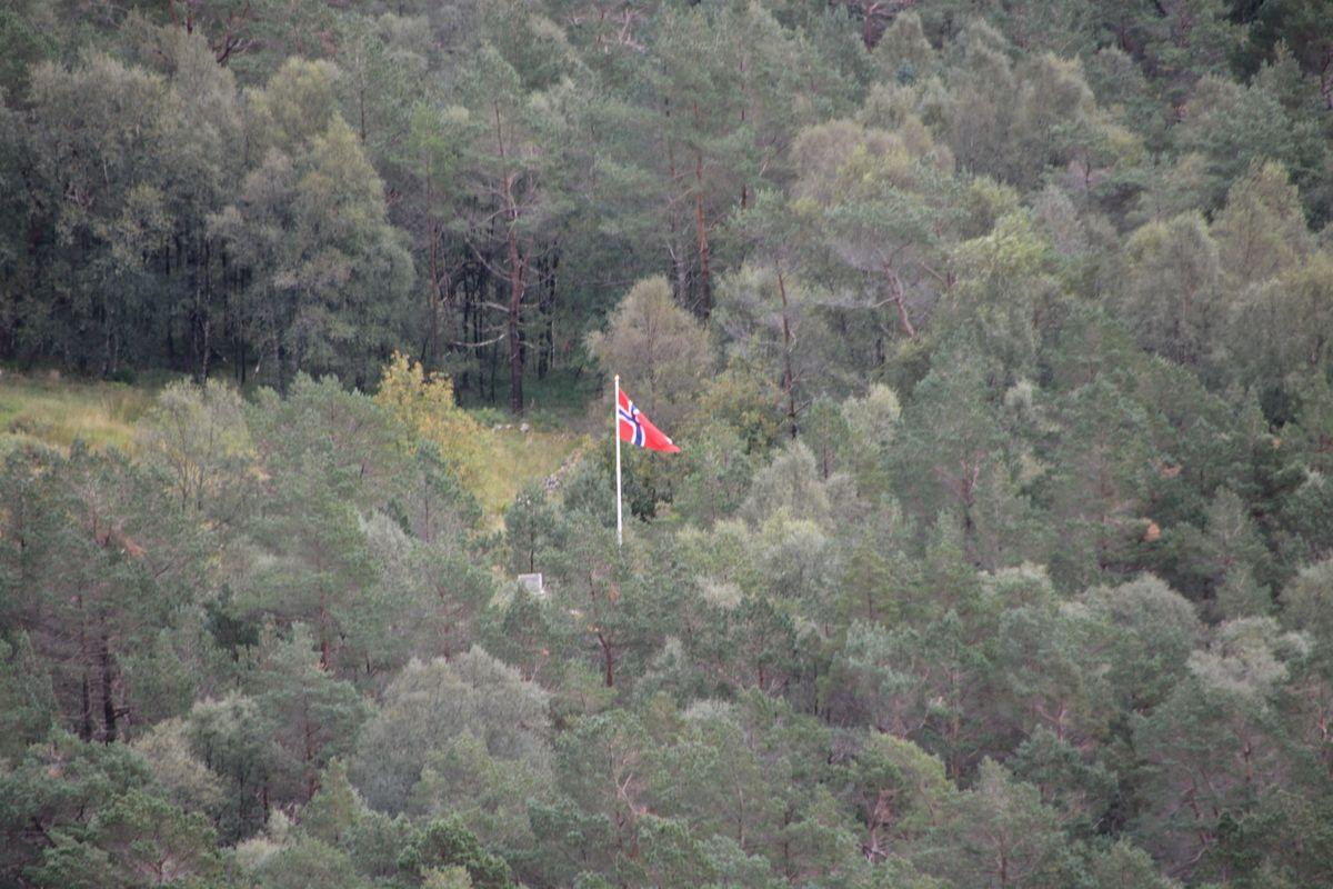 Flagget til topps på Vikestølen