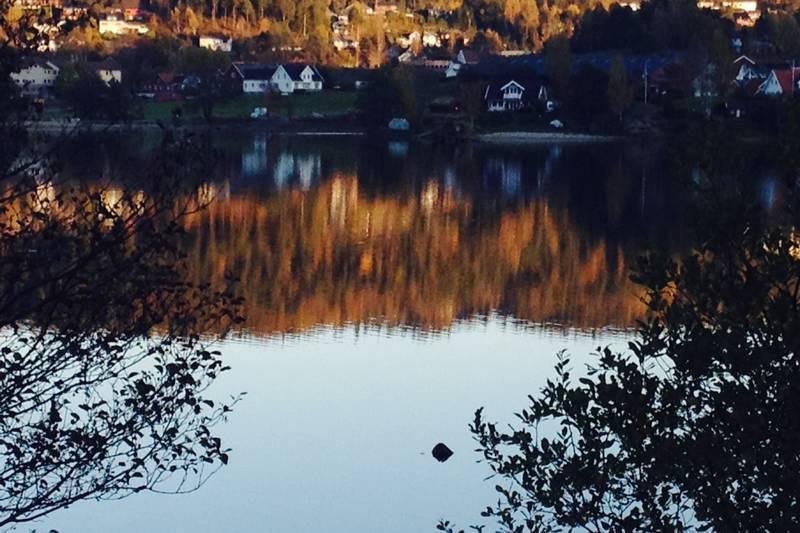 Strandsti vest: Utsikt mot Skjerehauan