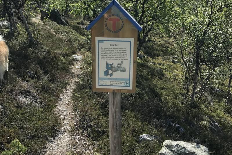 Svukurisets Natursti - en fin tur-aktivitet i nærområdet
