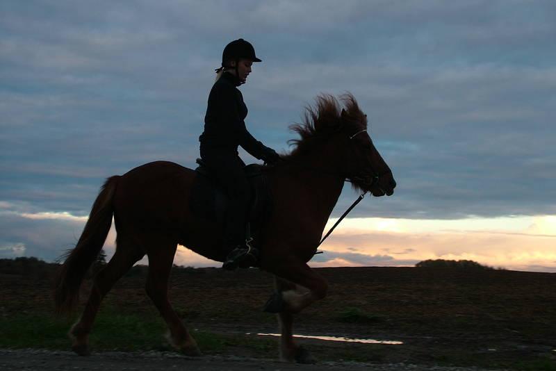 Gry Hagelund med hest på Ilseng