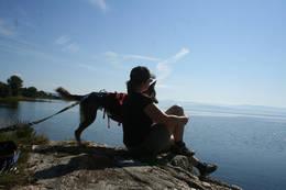 Idyll langs stien - Foto: Kathrine Kragøe Skjelvan