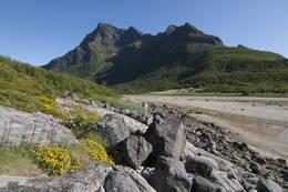 Fra Bjørnvåg. Ved fjære sjø kan du gå rett over leira, ved flo sjø må du helt opp til gården du ser i bildet. -  Foto: Kjell Fredriksen