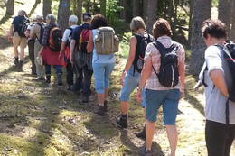 Mange frammøtte på kulturvandringa - Foto: Laila Lindberg