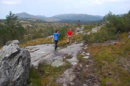 Åpent landskap med utsikt mot Dalsnuten -  Foto: Anne Katrine Lycke