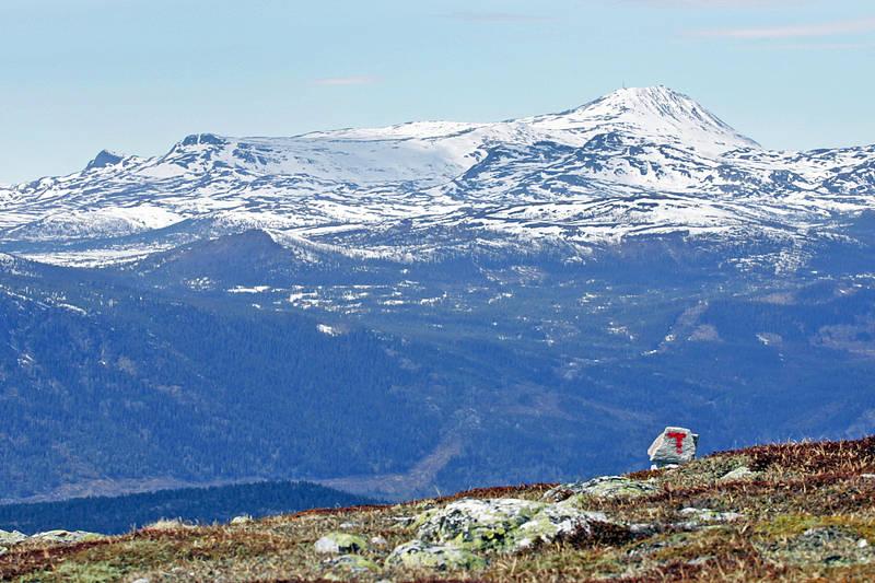 Utsikt mot Gaustatoppen og Tinnsjøen