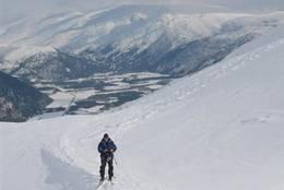 Bildet er tatt nederst i Breiskardet på vei opp til Raudsandtind, med Røvassdalen i bakgrunnen. -  Foto: Ukjent