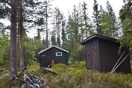 Juskjølkoia ligger djupt inne i skogen.  - Foto: Hallgrim Rogn
