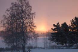 Tidlig vintermorgen langs Nord i Odal  - Foto: ELISABETH KAISA EMANUELSEN