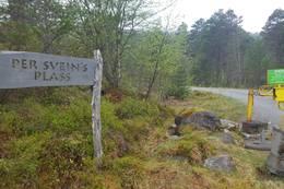 Turen gjekk ut frå Per Sveins Plass -  Foto: William Holden