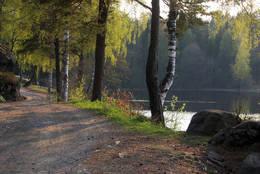Veien forbi Solbergvannet -  Foto: Aust-Agder turistforening