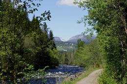 Bøelva mot Lifjell - Foto: Olav Finstad