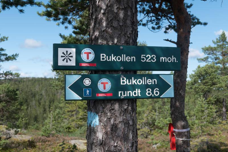 Bukollen rundt er en fin rundtur på 8,6 km.