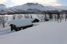 Krukki i vinterdrakt - Foto: Ketil Dalhaug