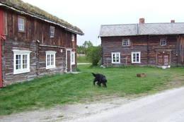 Narjordet  - Foto: DNT Oslo og Omegn
