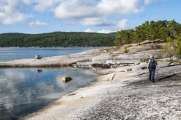Flotte svaberg. Klippetanga står ved stor stein i venstre bildekant. - Foto: Kjell Fredriksen