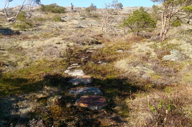 Det er lagt ut stein der terrenget er bløtt