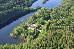 Sommer på Mariholtet ved Elvåga -  Foto: Øystein Søbye