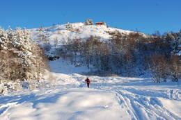 Byfjellene julehelgen 2010 - Foto: Torill Refsdal Aase