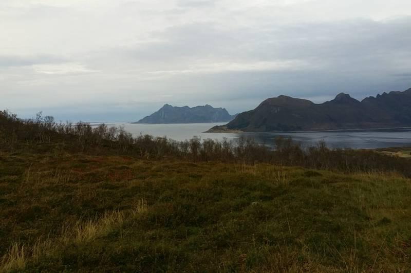 Utsikt nordover mot Finnes og Fugløya