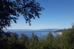 Utsikt over Trondheimsfjorden - Foto: Kathrine Kragøe Skjelvan