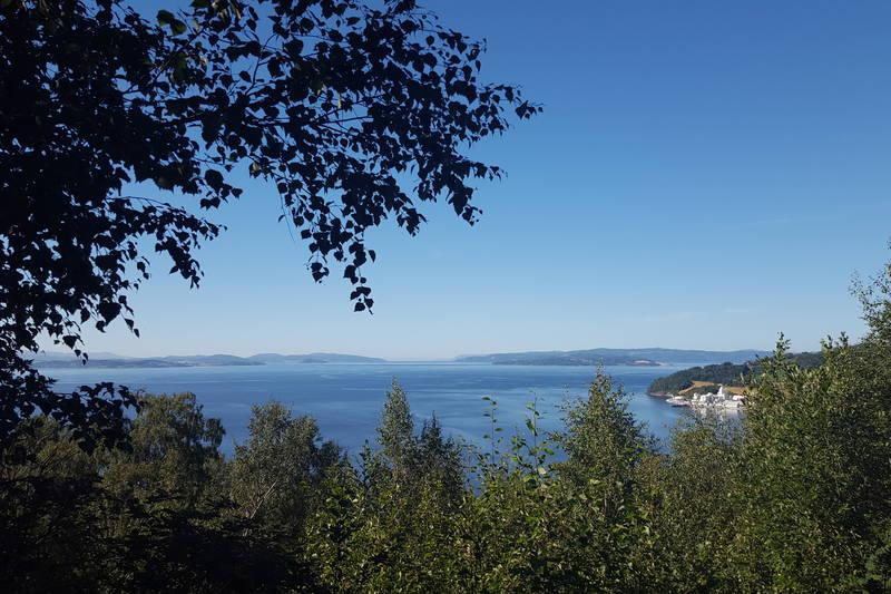 Utsikt over Trondheimsfjorden