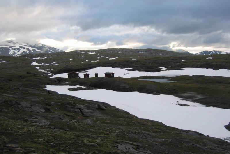 Sommer ved Røysvatn