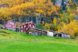 Vetti - Foto: Jørn Følstad
