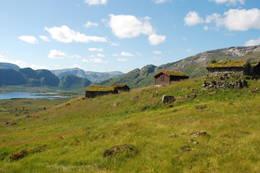 Solrenningsst¿lene i St¿lsheimen. - Foto: Torill Refsdal Aase